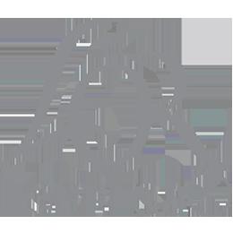 logo_lor_grey