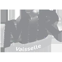 logo_mir_grey