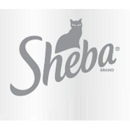logo_sheba_grey